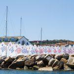 porto rotondo yacht club foto YCPR SELEZIONE NAZIONALE OPTIMIST ph. nanni ono 98