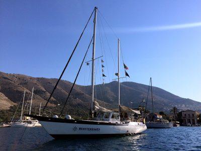 Un futuro sostenibile con il Gruppo Boero e Progetto Mediterranea